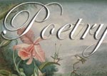 Poetry / Poems