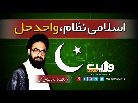 اسلامی نظام، واحد حل | شہید قائد، علّامہ عارف...