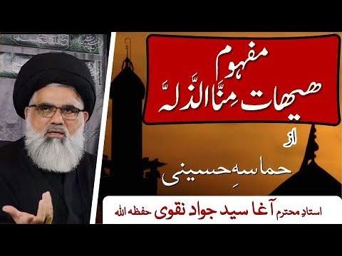 [Clip 11] Topic:Hamasa e Huseini  Mafhoom e Haihat Mina Zillah |Ustad Syed Jawad Naqvi...