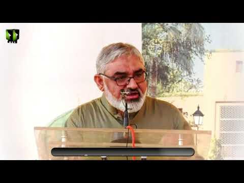 [Clip] Nizam-e-Elahi Or Hamaray Darmeyan Hael Rukawatain   H.I Syed Ali Murtaza Zaidi - Urdu