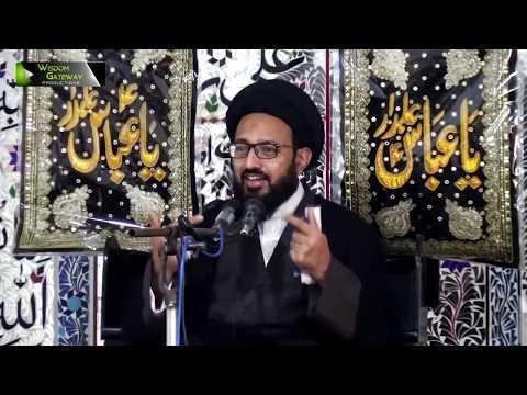 [Majlis 2] Topic: Quran o Ahlebait (as) Ke Nigah May Dosti Kay Usool | H.I Sadiq Raza Taqvi - Urdu