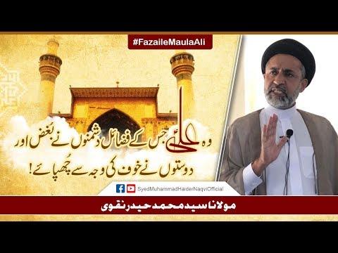 Woh Ali (a.s) Jisy Kay Fazail Dushmano Nay Bughz Aur Doston Nay Khof Ki Waja Say Chupaye! - Urdu