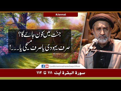 Jannat Main Kon Jaye Ga?   Ayaat-un-Bayyinaat   Hafiz Syed Muhammad Haider Naqvi   Urdu