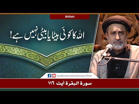 Allah Ka Koi Beta Ya Beti Nahi Hay!   Ayaat-un-Bayyinaat   Hafiz Syed Muhammad Haider Naqvi   Urdu