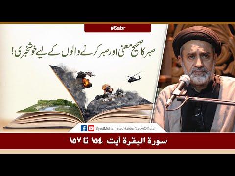 Sabr Ka Sahi Mani Aur Sabr Karny Walon Ky Liye Khushkhabri! | Ayaat-un-Bayyinaat | S. Haider Naqvi | Urdu