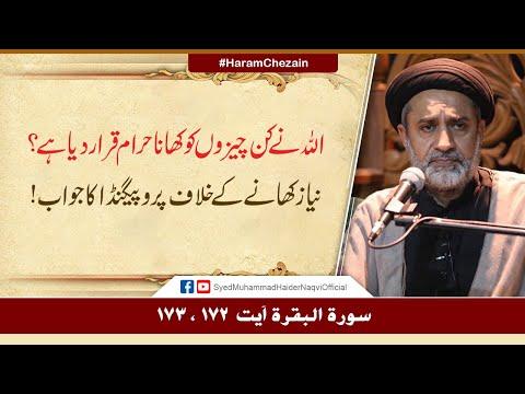 Allah Nay Kin Chezon Ko Haram Qarar Diya Hay? | Niyaz Khany Kay Khilaf Propaganda Ka Jawab! | H.I. Syed Haider Naqvi | U