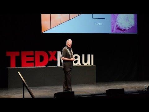 The beautiful nano details of our world - Gary Greenberg - English