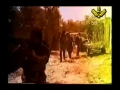 آخری جنگ Final Battle - Armageddon Documentary Part 2  - Urdu